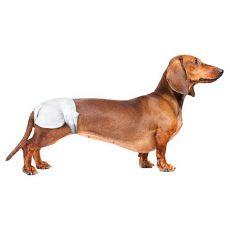 Scutece pentru câini - 12x, mărimea S-M