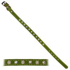 Zgardă cu model, verde, pentru câini  - 1,2x28-33,5cm