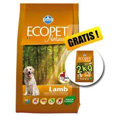 Farmina MO P ECOPET N dog LAMB MAXI 12 kg + 2 kg GRATUIT