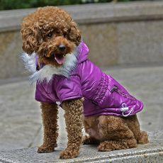 Jachetă pentru câini cu buzunar fals - mov, XS