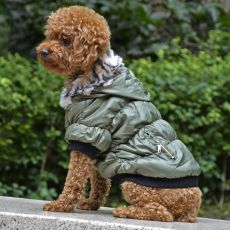 Jachetă pentru câine, cu manşete negre - verde, XS