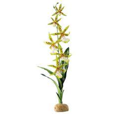 Exo Terra plantă pentru terariu- Spider Orchid, 45cm
