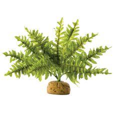 Exo Terra plantă pentru terariu - Boston Fern Small, 20cm