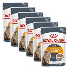 Royal Canin Intense BEAUTY 6 x 85g - hrană în pungă de aluminiu
