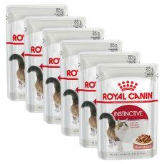 Royal Canin INSTINCTIVE 6 x 85g hrană pentru pisici în pungă de aluminiu