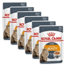 Royal Canin Intense Beauty Jelly 6 x 85 g