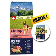 ONTARIO Adult Large Beef & Rice 12 kg + 2,25 kg GRATUIT