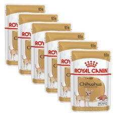 ROYAL CANIN ADULT CHIHUAHUA 6 x 85 g - pungă