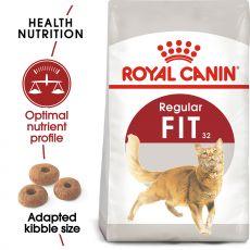 Royal Canin FIT 32 - hrană pentru pisici maturi 15 kg