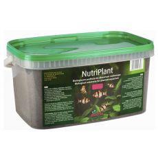 Substrat NutriPlant pentru plantele din acvariu, 3L