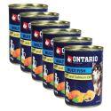 Conservă ONTARIO Pește și ulei de somon, 6 x 400g