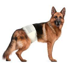 Scutece pentru câini L-XL, 12 buc