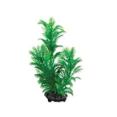 Tetra plantă acvariu - Green Cabomba S, 15cm
