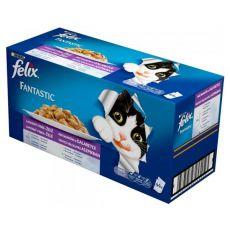 Pliculeț FELIX Fantastic - selecție delicioasă în gelatină, 44 x 100 g