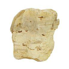 Pietre de Acvariu Petrified Stone M 13 x 9 x 15 cm