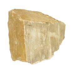 Pietre de Acvariu Petrified Stone M 12 x 11 x 10 cm