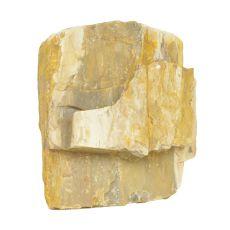 Pietre de Acvariu Petrified Stone M 13 x 7 x 12 cm