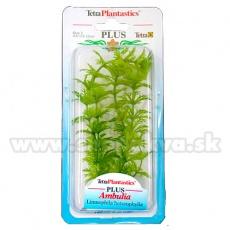 Limnophila sessiliflora (Ambulia) - plantă Tetra 15 cm