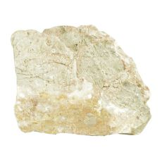 Pietre de Acvariu Grey Luohan Stone M 15 x 9,5 x 12 cm
