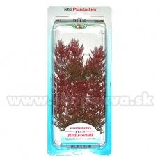 Myriophyllum Heterophyllum (Red Foxtail) - plantă Tetra 23 cm, M