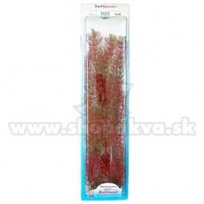 Myriophyllum Heterophyllum (Red Foxtail) - plantă Tetra 38 cm, XL