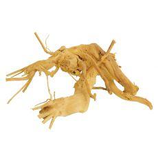 Cuckoo Root rădăcină pentru acvariu - 24 x 20 x 12 cm