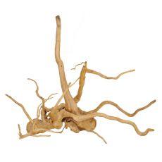 Cuckoo Root rădăcină pentru acvariu - 48 x 20 x 45 cm