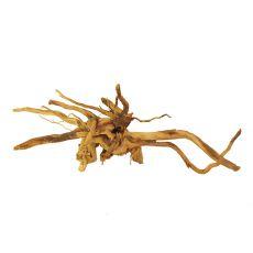 Cuckoo Root rădăcină pentru acvariu - 50 x 28 x 15 cm