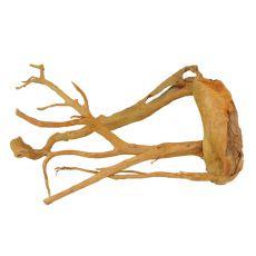 Cuckoo Root rădăcină pentru acvariu - 61 x 33 x 29 cm