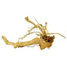 Cuckoo Root rădăcină pentru acvariu - 71 x 28 x 30 cm