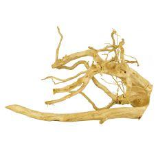 Cuckoo Root rădăcină pentru acvariu - 49 x 21 x 25 cm