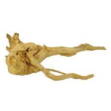 Cuckoo Root rădăcină pentru acvariu - 65 x 50 x 23 cm