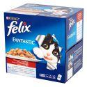 Felix Fantastic - meat in jelly, 24 x 100 g