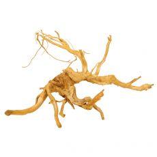Cuckoo Root rădăcină pentru acvariu - 58 x 44 x 35 cm