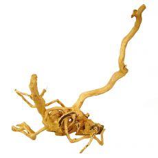 Cuckoo Root rădăcină pentru acvariu - 45 x 30 x 50 cm