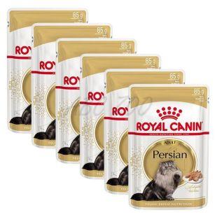 Royal Canin Adult PERSIAN - punguță 6 x 85 g