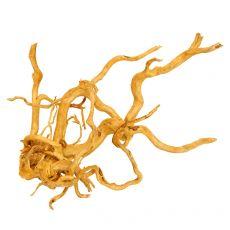 Cuckoo Root rădăcină pentru acvariu - 55 x 30 x 40 cm