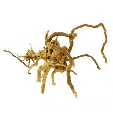 Cuckoo Root rădăcină pentru acvariu - 21 x 18 x 13 cm