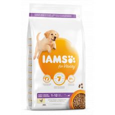 Iams Dog Puppy Large Breed, Chicken 12 kg