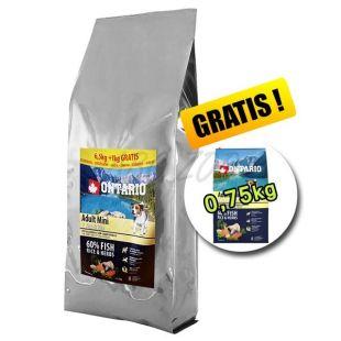 ONTARIO Adult Mini 7 Fish & Rice 7,5 kg + 0,75 kg GRATUIT