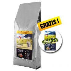 ONTARIO Senior Mini Lamb & Rice 7,5 kg + 0,75 kg GRATUIT
