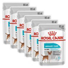 Royal Canin Dermacomfort Dog Loaf pliculeț cu pate pentru câini cu probleme de rinichi 6 x 85 g, 5+1 GRATUIT