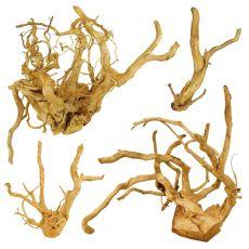 """Cuckoo Root """"PREMIUM"""" rădăcină pentru acvariu, 20 - 40 cm"""