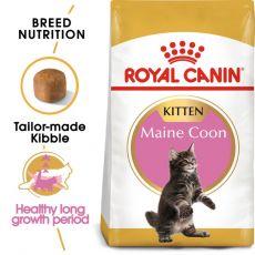 ROYALCANIN Maine Coon Kitten hrană pentru pisoiaşi Maine Coon 10 kg