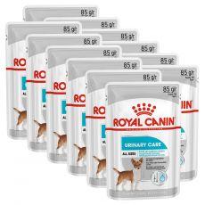 Royal Canin Dermacomfort Dog Loaf pliculeț cu pate pentru câini cu probleme de rinichi 12 x 85 g