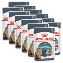 Royal Canin HAIRBALL CARE - pliculeț 12 x 85 g