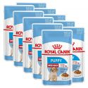 Pliculeț Royal Canin Medium Puppy 10 x 140 g