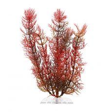 Plantă din plastic  Tetra Red Foxtail, S 15 cm