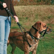 Ham de antrenament pentru câini - XS, 15 cm