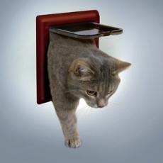 Uși pentru pisici cu 2 moduri de închidere-maro